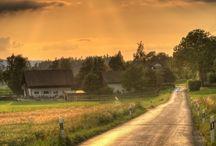 Roads of Life