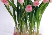 flores naturales / by Teresa Garcia Colunga