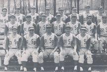 Athletics at Stony Brook University