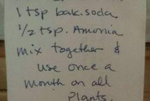 plant gro