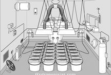 Hydroponic systems / by Taylor Hazlehurst