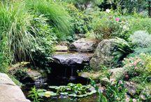 Garden- ponds