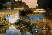 The Delta To Danube