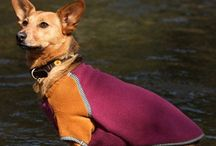 Dog Sweaters / Unique dog jacket made out of earth-friendly upcycled and recycled materials. Our unique dog coats come in limited-edition styles and colors. All of our pet clothing is machine washable for easy clean up after a dirty day at the park with Fido. Made for extra small to medium dogs. Available in different colors.
