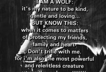 wolves / this bored is to the most beautiful , amazing and strong animal i know