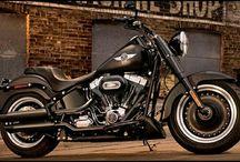 Harley Davidson / Harley Davidson motorcycles live to ride
