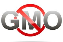 GMO / NON-GMO'S / Eating foods that are free from GMO.  GMO's are deadly toxins  that cause illnesses. / by Country Gal