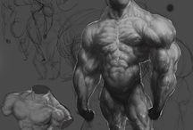 Anatomia postacie / Anatomia