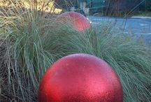 christmas garden / grasses and christmas