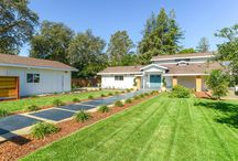 1085 Solano Avenue, Sonoma, CA 95476:For More Information Contact Casey Moll 707.931.8999 /  This stunning 3BD/3BA home features 2,460 SQFT of living space that flows over 2 levels. Upgraded with finishes, including:hardwood flooring throughout and a large master suite downstairs with vaulted ceilings, fireplace, skylight, walkin closet and bathroom. The kitchen features granite countertops and highend appliances. With a sound system in the family room and a 1,500 SQFT outdoor living area that features a dining area, BBQ, fireplace and fire pit, this home is ideal for entertaining