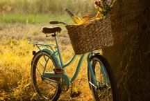 Autumn inspiration / Autumn inspirations for home decorating, picnics and table settings.