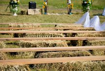 Character wedding ideas / by Shannon Taylor Vannatter