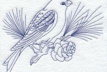 Kuşlar....