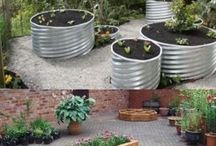 Landscaping & Garden Ideas