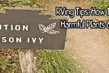 RVing Tips / Tips & Tricks Related To All Things RVing