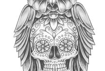 owl scull