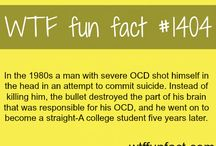 WTF Facts / The world is strange! But not as strange as these facts!