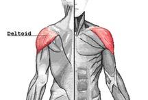 Body Graphics