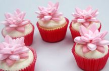 Cooking - Cupcakes