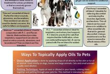 YOUNG LIVING PETS