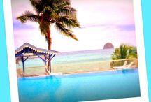 Bienvenue au Diamant Beach / Notre résidence hôtelière dispose de 49 appartements pour 2, 4 ou 6 personnes, répartis dans 10 villas de style créole de 2 ou 3 niveaux.
