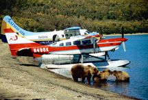 TOURS IN ALASKA / #Alaska is one of the most beautiful and #spectacular places on earth. Breathtaking #landscapes combined with a majestic #wildlife and an untouched #wilderness. Discover our amazing #tours in this magical place: http://x-ploregroup.com/holiday_locations/alaska/