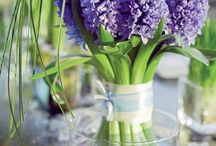 Spring has Sprung / We love spring flowers #Springfield  / by Durocher Florist
