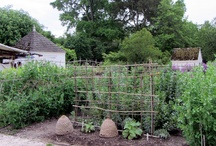 Herbs and Gardens / by Charisse Goforth