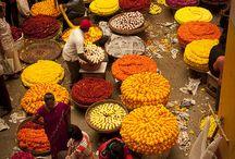 India Travel Photos