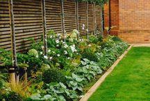 ogrod nowy