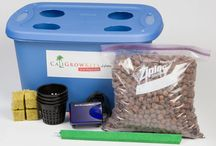 www.caligrowkits.com / Mushroom & Bud Grow Kit Outlet Ultra Simple 1 Step Grow Kits Growing is an Investment - Not an Expense Grow Responsibly