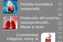 bioneuroemoció
