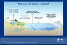 Sea Level Issue Illustrations