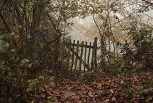 Fotografie- príroda a krajina