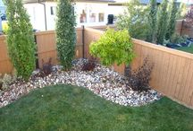 Landscaping Ideas / Ideas for our backyard