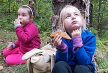 Nut-free Noms / This one time at speech camp...we were nut-free. / by Rachel Troutman