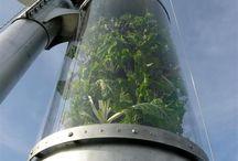 Vertical Gardening / Growing Upwards Saving Space