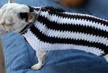 dog jumpers/jackets