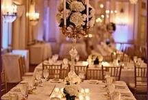 Wedding / by Mary Carroll
