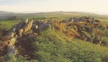 Paysages des Monts d'Arrée