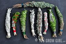 herbs/smudging