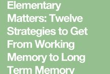 Executive Function and Memory