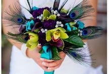 Peacock Feather Theme