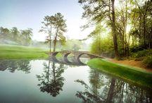 Golf / by Barbara Douglas