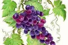 Vinarska vyzdoba