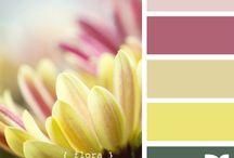 Flower color palette / by Dializ arts