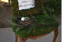 Moss Love / by Toni Chandler Flowers & Events