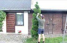 stříhání stromů