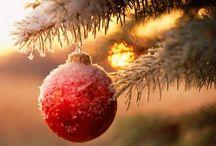 Christmas / by Teresa Peters