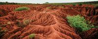 Soil soul / For the biodynamic soil unit!
